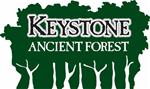 Forest Logo